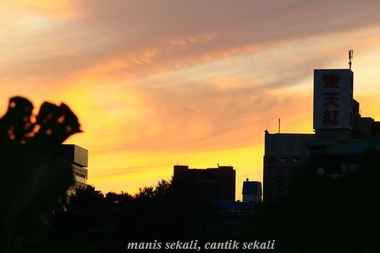 cantik3_20111115065214.jpg
