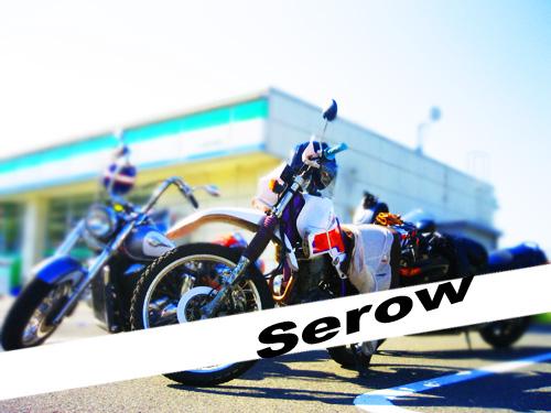 turuga_serow
