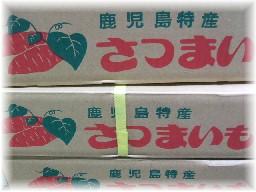 カライモ-鹿児島箱