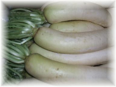地野菜-3