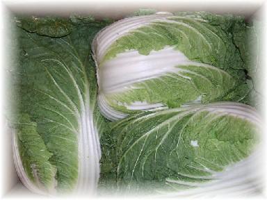 地野菜-4