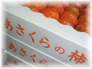 富有柿-1