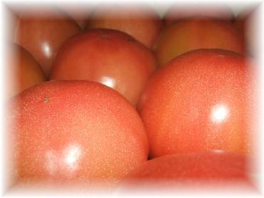 箱トマト-1