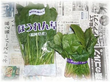 ほうれん草-1