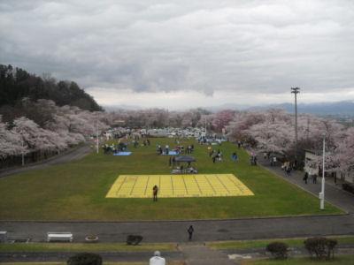 舞鶴山2010