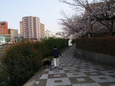 2010 03 22_O_0241