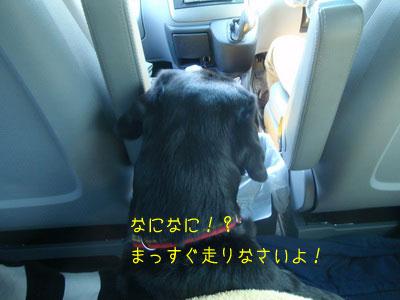 b_2010 05 01_2321