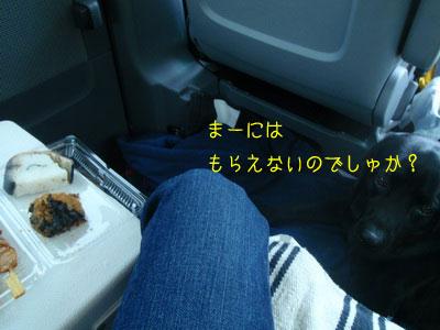 b_2010 05 01_2364