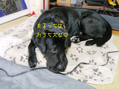 b_2010 09 25_3601