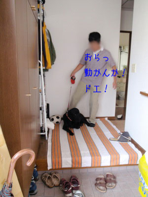 b_2010 09 25_3608