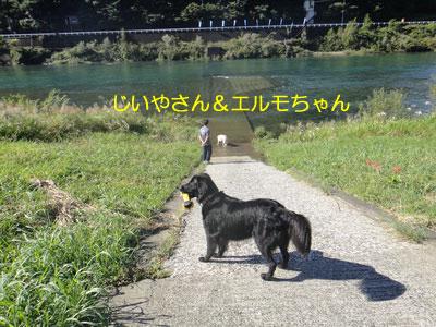 b_2010 10 11_4581