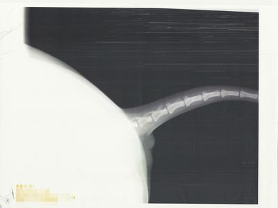 2010 12 02_0732