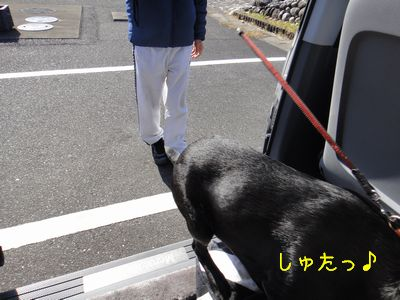 b_2010 12 23_2063