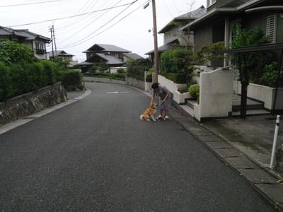 2010_09_08_P9080014.jpg