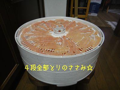 b_2011 01 09_2444