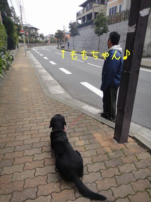 b_2011 01 09_2483