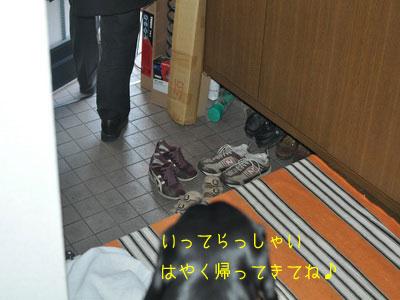 b20091218_DSC_0004.jpg