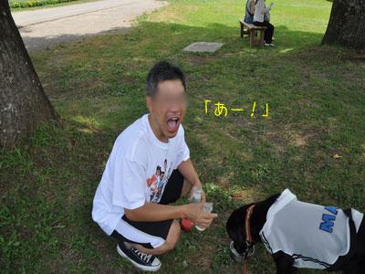 b2_touhoku_20100810_0658.jpg