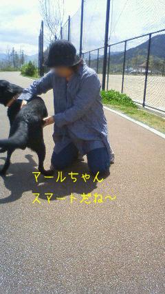b_2010-04-15_NEC_0066.jpg