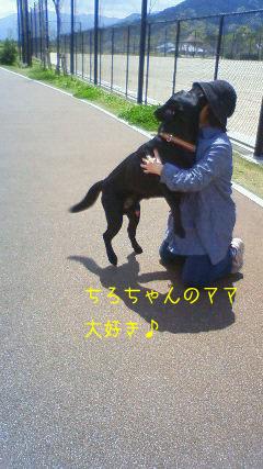 b_2010-04-15_NEC_0071.jpg