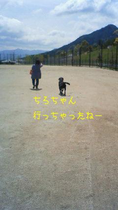 b_2010-04-15_NEC_0075.jpg
