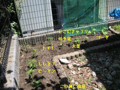 b_20100427IMG_0589.jpg