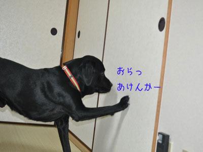 b_DSC_0020.jpg