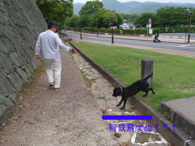 b_P5220117.jpg