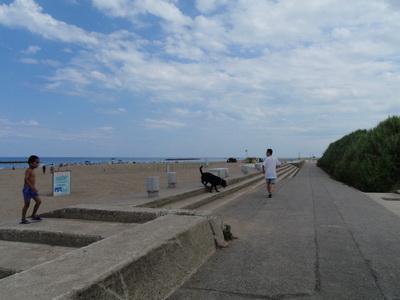 touhoku_20100811_0063.jpg