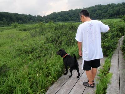 touhoku_20100811_0850.jpg