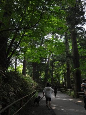 touhoku_20100811_0889.jpg