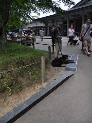 touhoku_20100811_0963.jpg