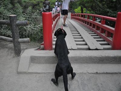 touhoku_20100811_1013.jpg
