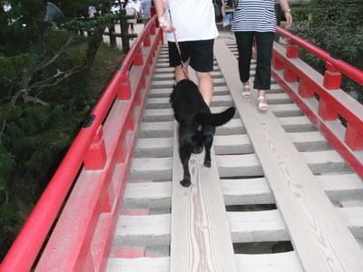 touhoku_20100811_1160.jpg