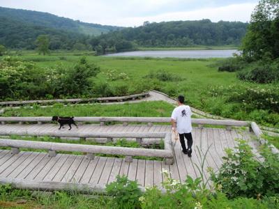 touhoku_20100811_1209.jpg