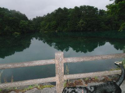 touhoku_20100812_1249.jpg