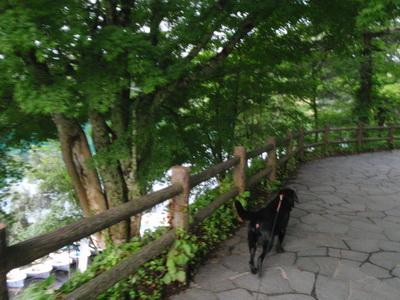 touhoku_20100812_1251.jpg