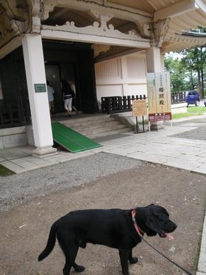 touhoku_20100812_1301.jpg