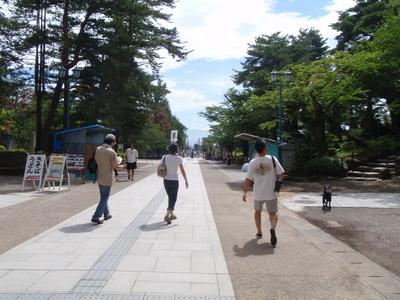 touhoku_20100812_1308.jpg