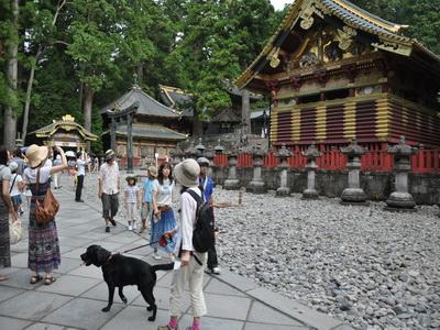 touhoku_20100813_1481.jpg