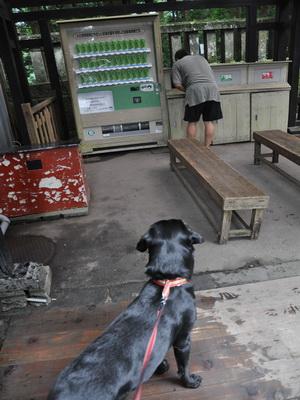 touhoku_20100813_1514.jpg