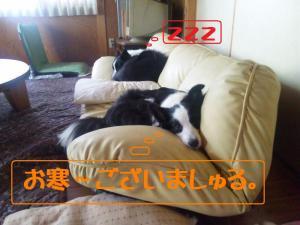 101110_114253mt.jpg