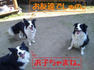 101120_125713mt.jpg