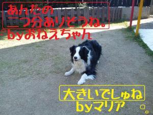 101120_125746mt.jpg