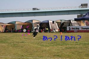 20100322_5639mt.jpg