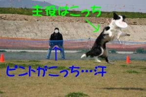 20100418_6807mt.jpg