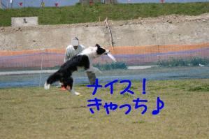 20100418_6808mt.jpg