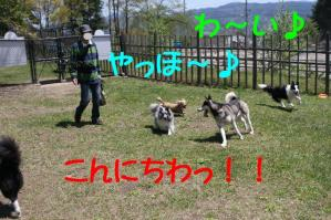20100515_7804mt.jpg