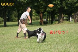 20101002_9000mt.jpg