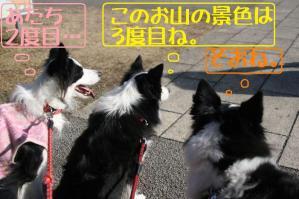 20101231_11438mt.jpg